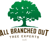 All Branched Out Tree Experts Logo
